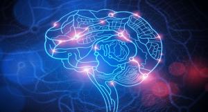 brain-world-bizsiziz