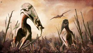 Benzer şekilde boyutlandırılmış ancak daha güçlü olan Maastrichtian, Transilvanya devi azhdarchid pterosaur Hatzegopteryx sp. Rabdodontid iguanodontian Zalmoxes üzerinde avlanır. Geç kretase Haţeg Adası'nda büyük yırtıcı theropodlar bilinmediğinden, dev azhdarchidler bu toplulukta karasal yırtıcılar olarak önemli bir rol oynamış olabilir. PeerJ (2017). DOI: 10.7717 / peerj.2908