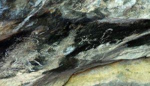 Avrupalı figürlerin ve hayvanların birarada bulunduğu çizimler. F: INHA