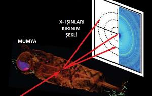 Mumyaların İçindeki Detaylar, X-Işını Kırınımı İle Ortaya Çıkıyor.