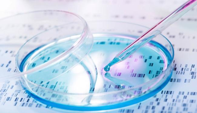 Gen Düzenleme