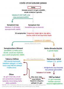 Covid-19'un İlerleme Şeması