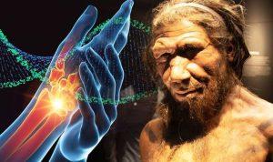 Neandertal Gene Sahipseniz
