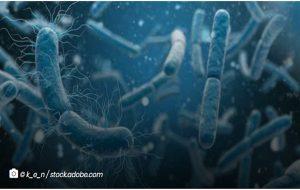 Yeni Nesil Antibiyotikler