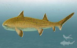 Muhteşem Fosil Keşfi: 150 Milyon Yıllık Köpek Balığı, Zamanının En Büyüklerindendi