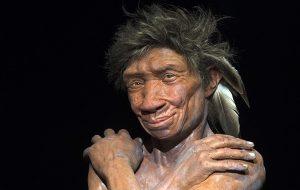 Neandertal DNAsı