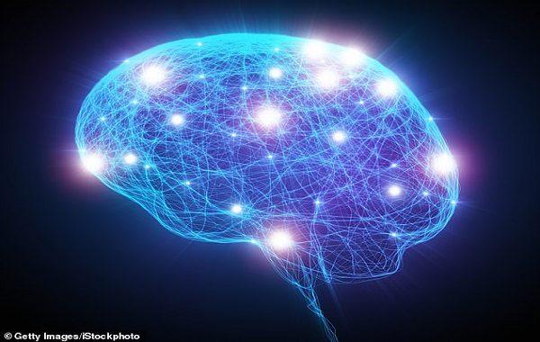 Alzheimera Karşı En Savunmasız Beyin Hücreleri İlk Kez 'Kutsal Kase'de Tespit Edildi