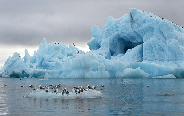 Dünyanın Buzulları