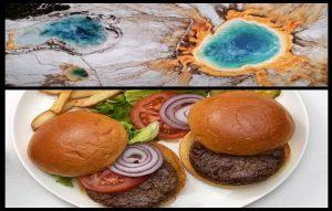 Proteine Dönüştürülen Kaplıca Mikrobundan, Sağlıklı Hamburgerler Yapılıyor