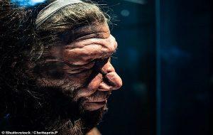 Bizi Neandertal Kuzenlerimizden Ayırmış Olabilen Tek Bir Gen Değişikliği Keşfedildi
