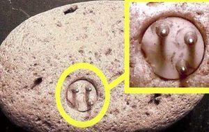 100.000 Yıllık Üç Uçlu Fişin Gizemi