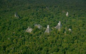 Lazer Tarama Gizli Şehirler Dahil 60.000 Antik Maya Yapısını Ortaya Çıkardı