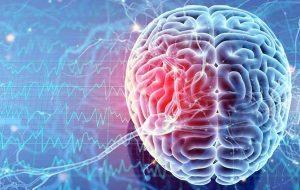 İnsan Beyninin