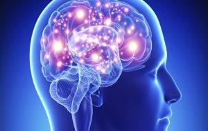 Bilincin Anahtarı Beynimizde