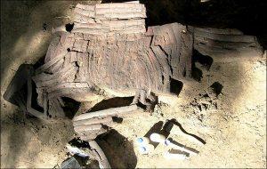 Hayattan Daha Değerli Görülen 3900 Yıllık Kemik Zırh