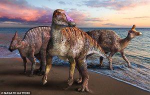 Japonyada Keşfedilen Ördek Gagalı Dinozor Türü, Bilinen Göç Yolunu Tam Tersine Çevirdi