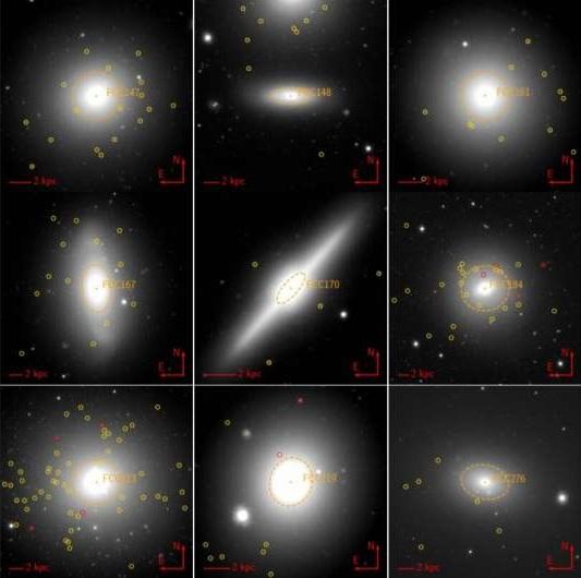 Dozens of ultra-compact dwarf