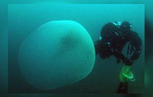Bilim İnsanları Deniz Tabanında