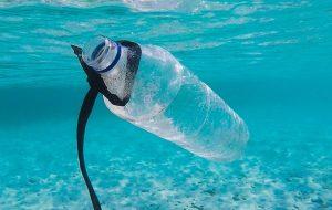 Plastik Atıkları