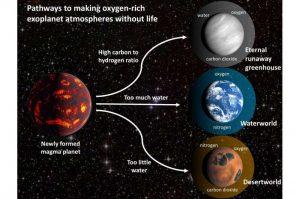 Study warns of 'oxygen