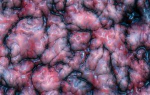 Canlı İnsan Beyni Dokusunda Türünün İlk Örneği Deney Gerçekleştirildi