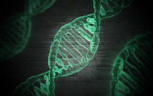 Researchers reveal key information