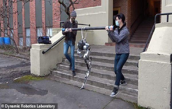 Kör Robot Cassie Yolunu Hissederek Karanlıkta Yürüyor, Merdiven Çıkıyor