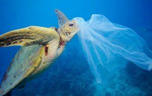 Plastik Atık İlk Kez Deniz
