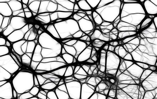 İnsan Nöronlarının
