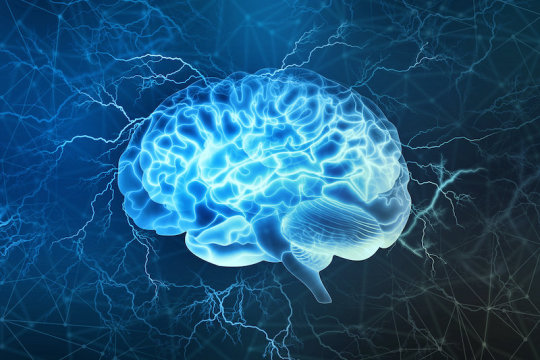 Study finds brain areas involved