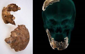 Daha Önce Bilinmeyen Bir Antik İnsan Türü Keşfedildi: Nesher Ramla Halkı