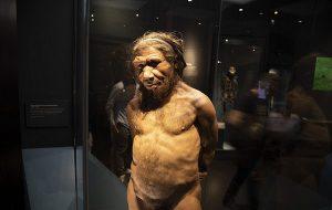 50.000 Yıl Önce İnsanlar ve Neandertaller Negev Çölü'nde Birlikte Yaşıyordu
