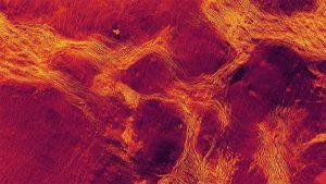 'Pack ice' tectonics reveal Venus' geological