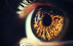 Yeni Optik İllüzyon, Parıldayan Işınlar Görmesi İçin Beyni Kandırıyor