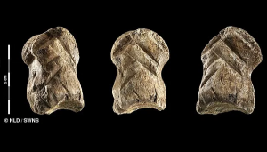 """51000 Yıl Öncesi Neandertallerine Ait """"Dünyanın En Eski Süsü"""" Keşfedildi"""