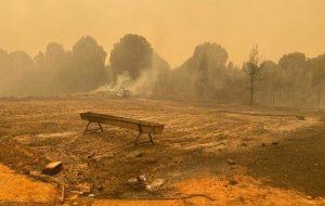 Yangın Ekoloğu