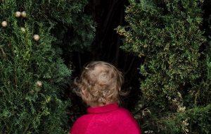 Yeni Bir Araştırmaya Göre; Ağaçlar Çocukların Beyin Gelişimine Yardımcı Oluyor