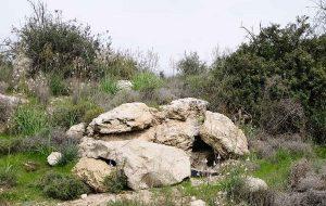İsrail Askerleri İçin Termal Dedektörle Dahi Görünmez Çok Amaçlı Kamuflaj Geliştirildi