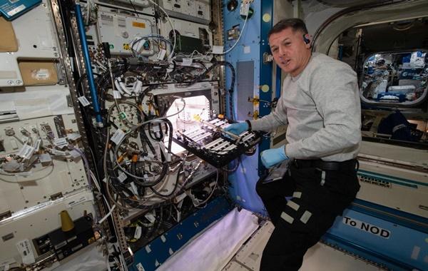 NASA Uluslararası Uzay