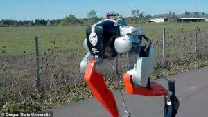 İki Ayaklı Robot Cassie 5K Koşusunu 53 Dakikada Tamamlayarak Tarihe Geçti