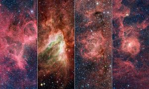 Astronomers find