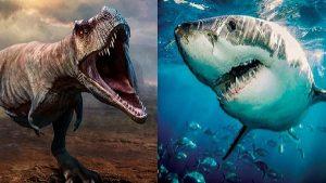 Nasıl Oldu da Köpek Balıkları Dinozorları Yok Eden Asteroit Felaketinden Zarar Görmeden Kurtuldu?