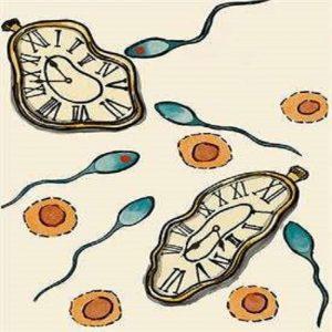 Human sperm mutations