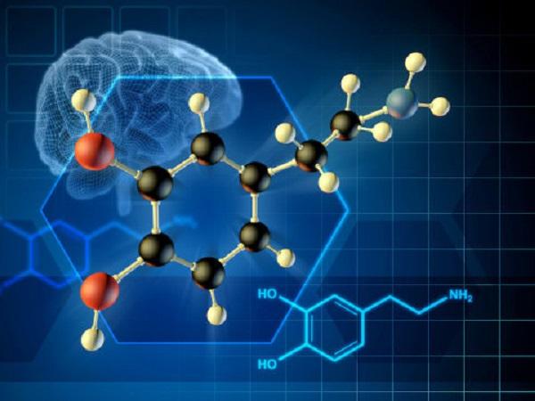 'Feel good' brain messenger can be willfully