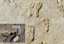 23.000 Yıllık Ayak İzleri, Bilinen Amerika Tarihinin 10 Bin Yıl Ötesine Ait Çıktı