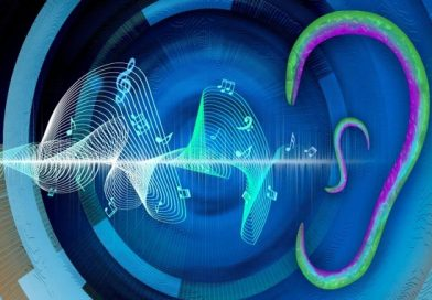 Earless Worms Can Listen – Sense Sound Waves Through Their Skin