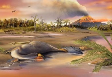 Potential Remnants of Original Dinosaur DNA Discovered in Exquisitely Preserved Dinosaur Cells