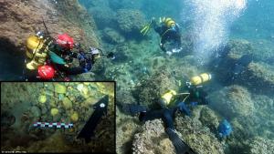 Amatör Dalgıçlar Deniz Yatağında Çöp Temizlerken Roma Hazinesi Buldu