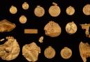 Define Avcısı Arkadaşına Ait Arazide Bir Kiloluk Demir Çağı Altın Hazinesi Buldu