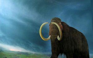 Bilim İnsanları 42 Bin Yıllık DNA'yı Kullanarak Mamutları Geri Getirmeyi Planlıyor